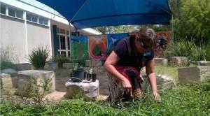 Pomona State School - Aboriginal garden